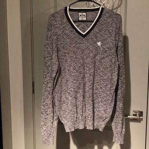NWOT! *MENS* V-NECK LOGO SWEATER (EXPRESS)
